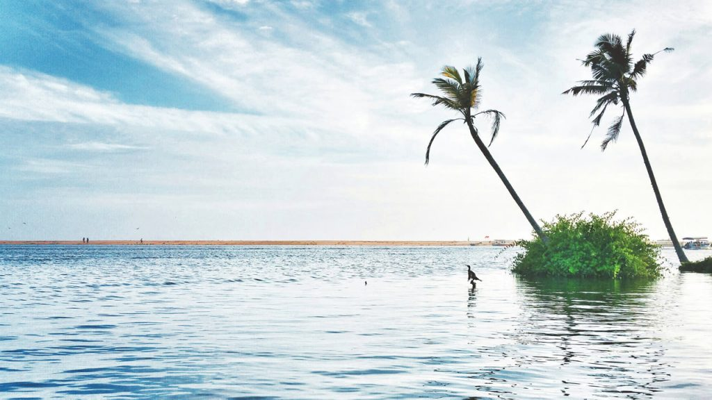 Marari Beach du Kerala en Inde