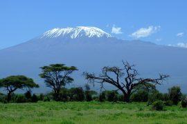 Tanzanie-kilimanjaro